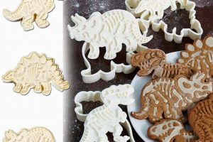 biscuits moule dinosaure t rex triceratops stegosaure